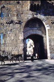 St Stephen's Gate  Jerusalem  Israel
