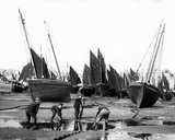 The Fishing Fleet in St Ives Harbour  C1880-99
