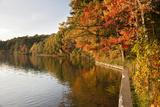 Walden Pond in Lexington  Boston  Usa