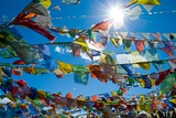 Forest' of Prayer Flags Backlit Against the Sun at the Top of Khardung La Pass (5 606M) North of…