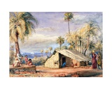 A Toddy-Drawer's Hut in a Grove of Date Palms  Bombay Presidency  India