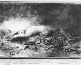 Naked Young Girl Lying on an Animal Skin