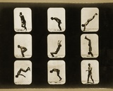Athletes  Irregular  from the 'Animal Locomotion' Series  C1881