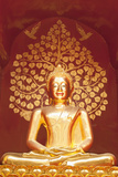 Golden Buddha Statue Inside the Chedi of Wat Phan On  Chiang Mai  Thailand