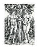 The Fall of Adam and Eve  C1525-27