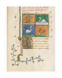 Page from 'De Proprietatibus Rerum' by Bartholomeus Anglicus  in the French Translation of Jean…