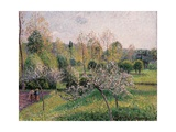Apple Trees in Blossom  Eragny  1895