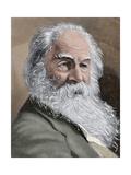 Walt Whitman (1819-1892) American Poet  Essayist and Journalist