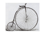 Penny-Farthing Bicycle Engraving 19th Century