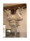 Capital Palace of Darius I