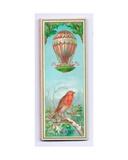 Victorian Christmas Card  C1880