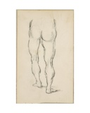 After Luca Signorelli: Study of Legs  C1883-86