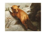 The Red Fox  1870