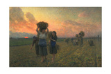 The Last Gleanings  1895