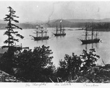 Hms Charybdis  Hms Satellite and Hms Cameleon at Esquimalt Royal Navy Dockyard  British Columbia …