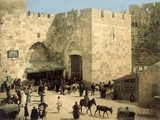 Jaffa Gate  from Outside the Walls with Donkeys and People in Front of the Gate  C1880-1900