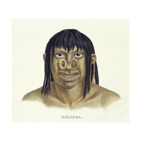 Native Man of the Miranha Tribe  with Nose Decoration  from 'Atlas of a Journey in Brazil' by…