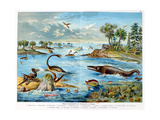 Prehistory - Jurassic - Reconstruction of Natural Environment in Europe and Some of the Animals…