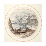 Tortoise  Early 17th Century