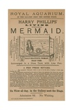 Advertisement for Harry Phillips' Living Mythological Mermaid Giclée
