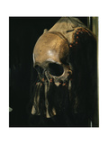 Shaman's Mask/Headdress Made from the Front Section of a Human Skull