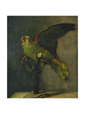 The Green Parrot; Le Perroquet Vert  1885
