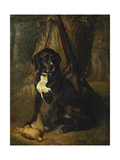 A Gun Dog with a Woodcock  1842