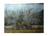 Detail of the Fresco from the Main Hall of Livia's Villa at Prima Porta  Outside Rome