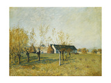 The Trou D'Enfer Farm  Autumn Morning; La Ferme Du Trou D'Enfer  Matinee D'Automne  1874