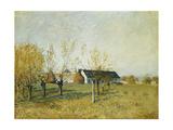 The Trou D'Enfer Farm  Autumn Morning; La Ferme Du Trou D'Enfer  Matinee D'Automne  1874