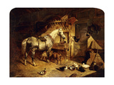 The Interior of a Stable with a Dapple Grey Horse in Harness  with Ducks  Goats  and a Cockerel…