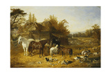 A Farmyard with Horses and Ponies  Berkshire  Saddlebacks  Alderney Shorthorn Cattle  Bantams …