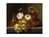 Still Life with Peach  Grapes and Rosehips  1865