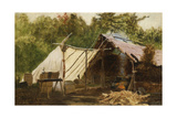 Camp in the Main Wood No  1879