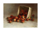 Box of Strawberries  1897