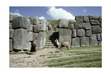 Quechua Woman and Llama Walking Past a Monumental Inca Doorway and Wall at Sacsahuaman