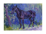 Study for Sussex Farm Horse  C 1904-6