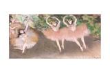 Scene De Ballet  C1879