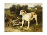 A Fox Terrier with the Day's Bag  1888