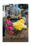 Flower Garland Maker and Seller Sitting under Durga Devi Temple Arch in Vidyaranyapura …