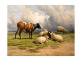 A Cow and Five Sheep  1887