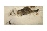A Cat Stalking a Mouse in the Snow  1892