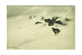 Grouse in a Snow Storm  1890