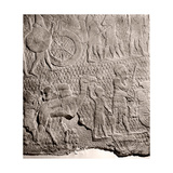 Stone Relief from the Palace of King Sennacherib  Nineveh