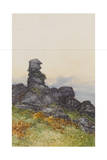 BowermanS Nose  Manaton Dartmoor   C1895-96