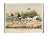 Lady Suffolk' and 'Lady Moscow'  Hunting Park Course  Philadelphia  13th June  1850