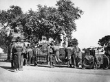 A Group of H E the Viceroy's Elephants and their State Trappings  C1860s