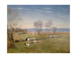 Landscape with Sheep  1898