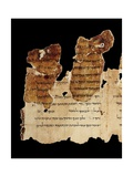 Portion of the Temple Scroll  Dead Sea Scrolls  Qumran