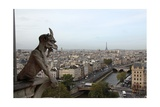 View over Paris from Notre Dame Cathedral